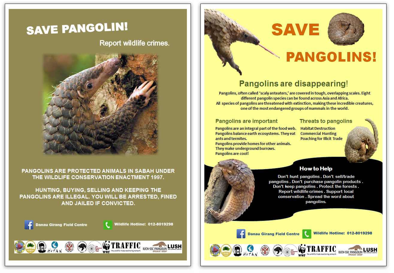 Pangolin posters