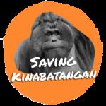 Saving Kinabatangan logo