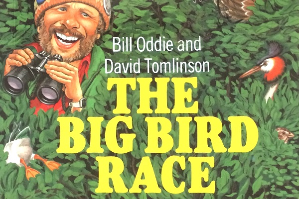 Big Bird Race book