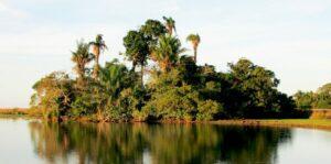 Bolivia Islas Rio Tiniji Barba Azul