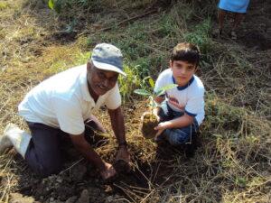 tree-planting-regua