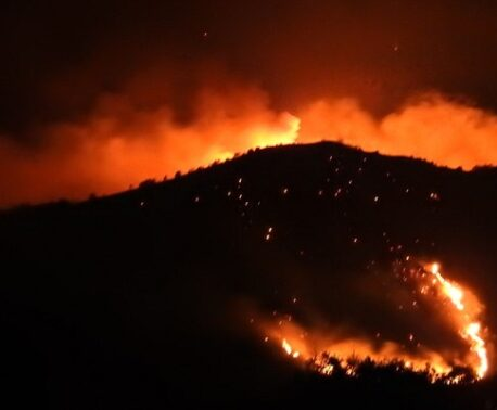 Fire in the Caucasus Wildlife Refuge
