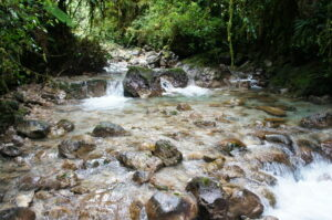 Stream within San Isidro, Guatemala, Credit Fundaeco.