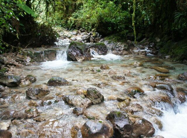 Stream within San Isidro, Guatemala, Credit Fundaeco.