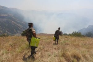 Firefighting in the Caucasian Mountains, Armenia