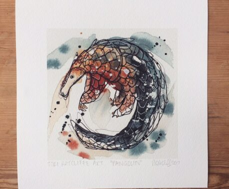 Pangolin print by Tori Ratcliffe