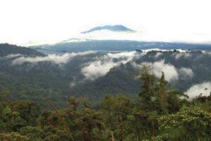 Amazonian Andes, Ecuador