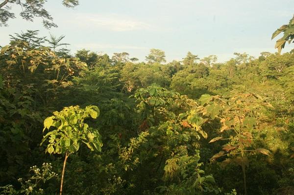 El Silencio Reserve