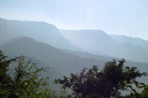 Western Ghats (Sangameshwar) Image: Jayant Sarnaik