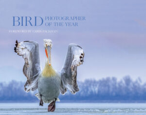 Bird Photographer of the Year cover