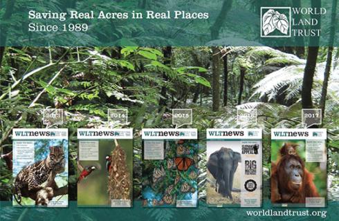 Saving Acres