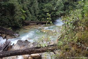 Guatemala - La Soledad Reserve