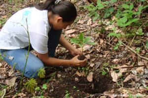 Tree planting in Cerro Blanco
