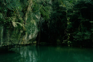 Deeper Green © Jonny Lu Studios/ Colin Dodgson