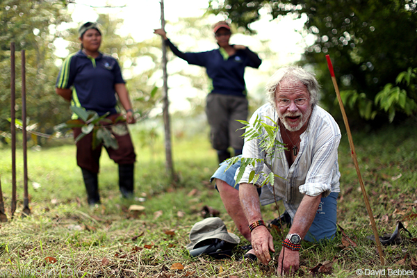 WLT Council Member Bill Oddie planting a tree in Malaysian Borneo