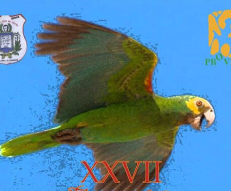 Endangered Yellow-shouldered Parrot celebrated on Margarita Island