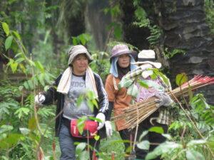 People,Keruak Corridor©HUTAN