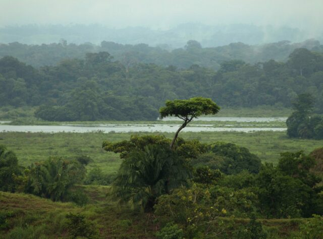 Barbacoas Wetlands ©Catalina Giraldo