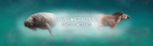 Saving Magdalena