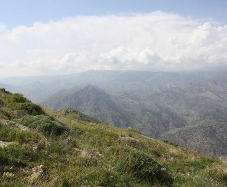 Caucasus Wildilfe Refuge ©Mary McEvoy/WLT