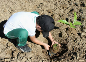 Child Planting a Tree ©WLT/Scott Guiver