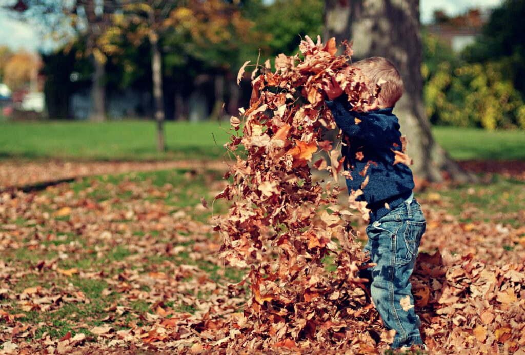 Child Playing With Leaves. Credit: Scott Webb on Unsplash