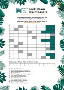 Quiz2 - Catchword