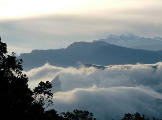 El Dorado Reserve. Credit: ProAves