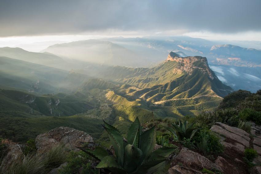 Sierra Gorda mountain landscape. Credit: Roberto Pedraza Ruiz