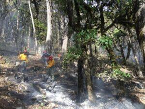 Firefighting at Sierra Gorda. Credit: GESG