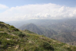 Caucasus Wildlife Refuge. Credit: Mary McEvoy