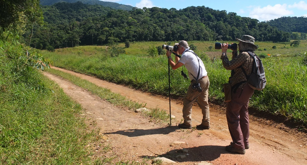 Alan Martin and Sue Healey, photographing butterflies. Credit: Neda Berardone.
