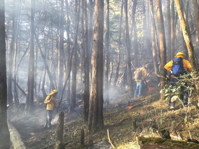 Fire in Sierra Gorda, Mexico. Credit:GESG