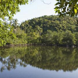 Lagoon on Danjugan Island. Credit: Toby Gibson