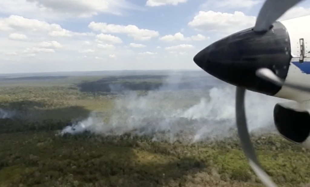 A view of smoking fires in Guatemala, from a small plane. Credit: FUNDAECO
