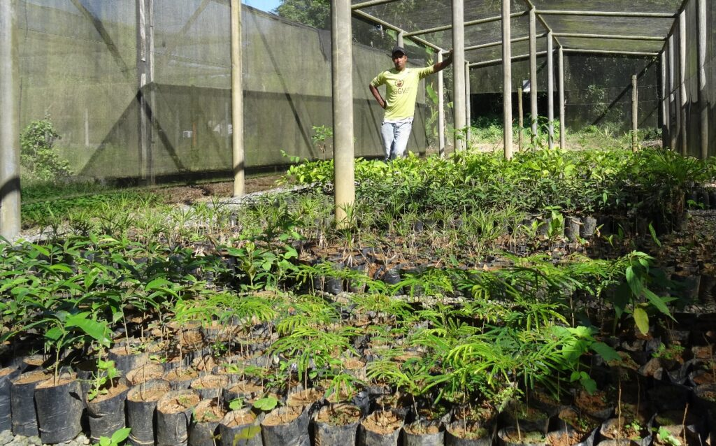 Mauricio Noqueira standing in the tree nursery at REGUA Brazil.