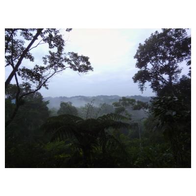 Ecuador; image by Tanya Larsen