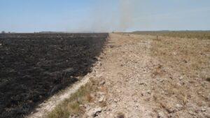 Image of a successful firebreak on the boundary of Barba Azul reserve, Bolivia.