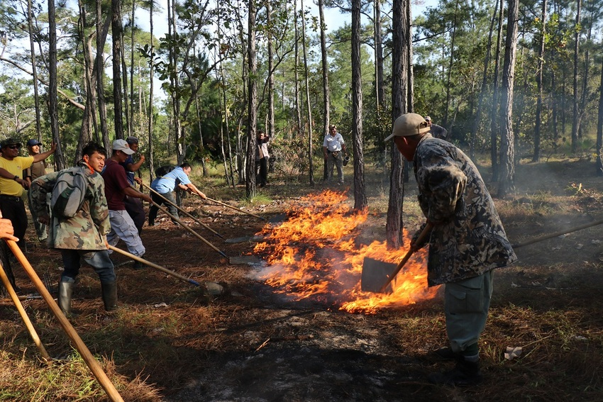 Rangers undertaking fire prevention training in Belize. Image credit: Vladimir Rodriguez
