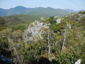 Panorama of Sierra Gorda Biosphere reserve, showing mountains in the distance and a rocky outcrop and pine trees in the foreground.