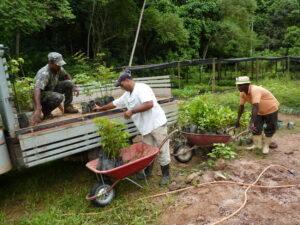 Nursery workers at REGUA Brazil. Credit: Alan Martin.