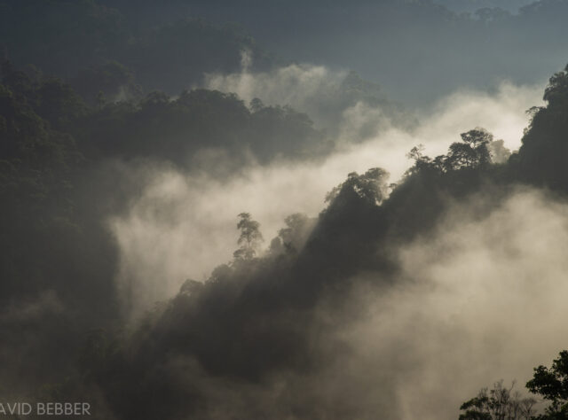 Khe Nouc Trong - copyright David Bebber