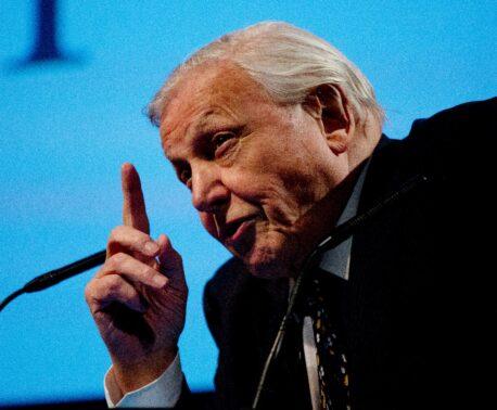Sir David Attenborough © David Bebber
