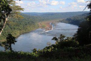 Yabotí Biosphere Reserve ©Fundación Naturaleza para el Futuro