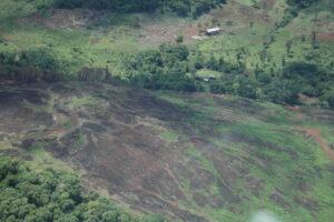 A scene of deforestation near Misiones, Argentina ©WLT/John Burton
