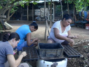 Planting seeds, Margarita Island ©PROVITA