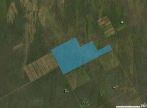 campo-iris-map