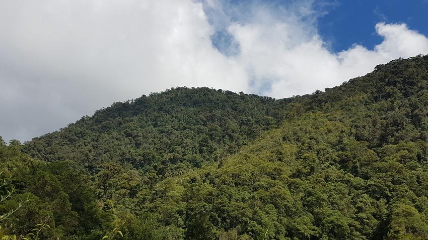 A view of Soledad