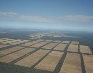 Deforestation in Paraguay