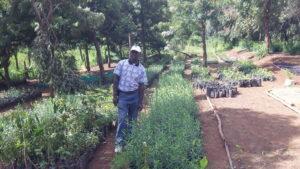 Nelson Njihia, Rehabilitation and Livelihood Improvement Department Manager